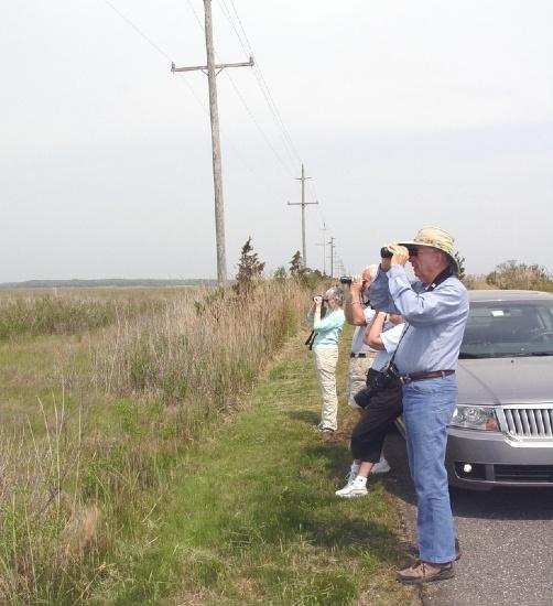 Schneiders birding in Tuckerton