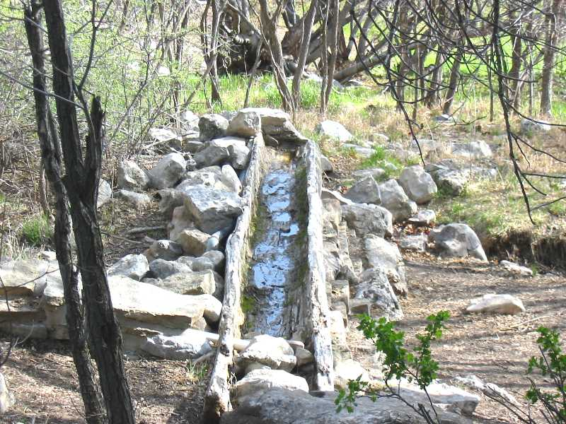 The Log at Capulin Spring
